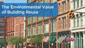 environmental value